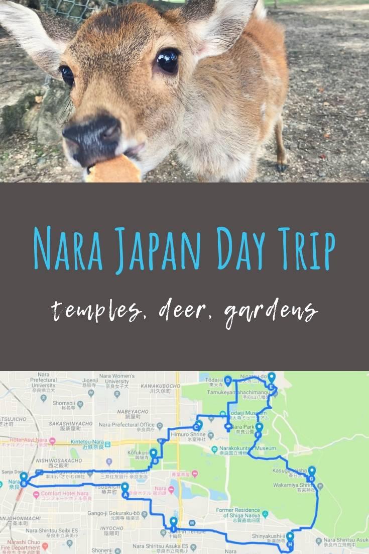 Day Trip to Nara from Osaka - Nara Walking Tour to Visit ... Nara House Planning Sri Lanka on sri lanka architecture, sri lanka home design, sri lanka furniture, sri lanka bedroom, sri lanka kitchen, sri lanka doors,